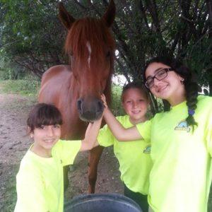 3 jeune au Camp de jour équitation à Laval
