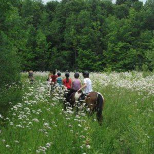 Proménade des jeunes en cheval pendant du Camp de jour équitation à Laval