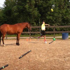 Comprendre le cheval au Centre d'Équitation à Lvaval