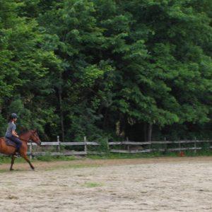 Centre équestre d'équitation Bonanza
